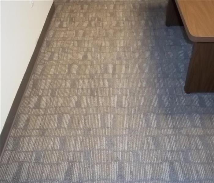 clean and dry carpet