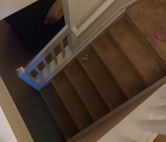 Wet carpeting on stairs with water damage